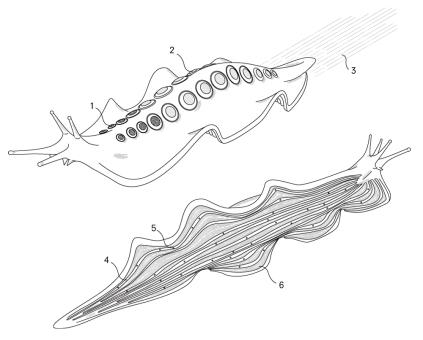 extinction_slug